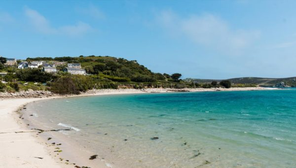 Coastal Walk & Sea-Watching - Isles of Scilly Wildlife Trust, Event