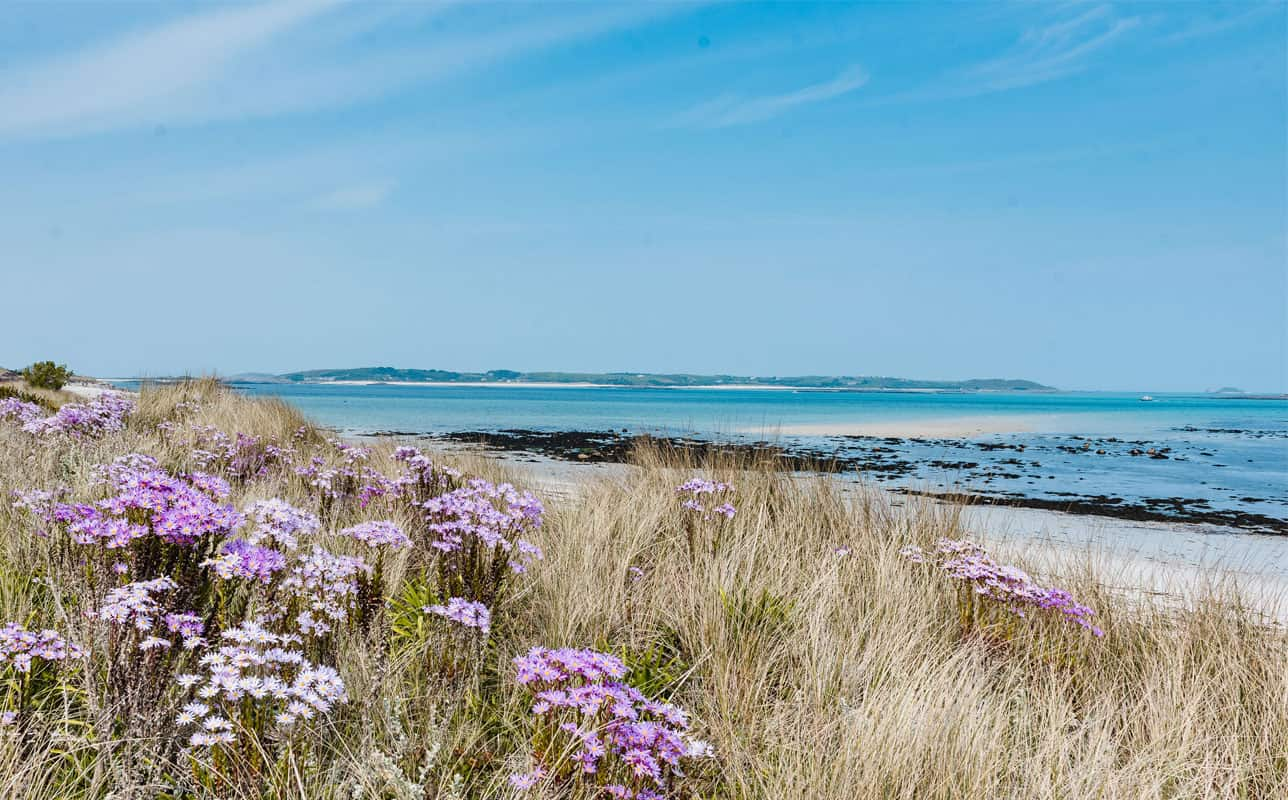 Pentle Bay, Tresco - Isles of Scilly