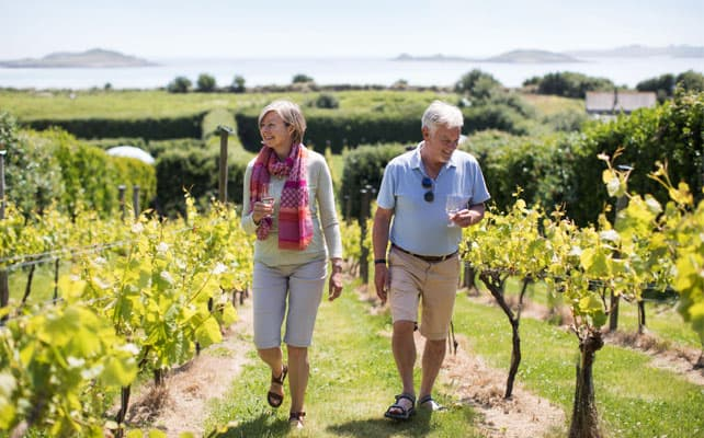 St. Martin's Vineyard, Isles of Scilly