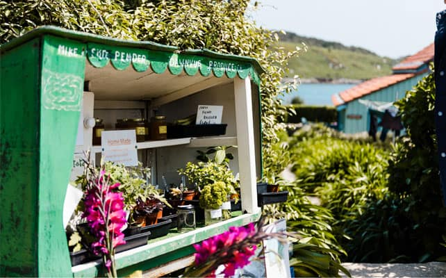 Stall selling local produce on Bryher