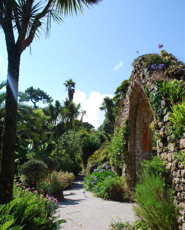 Tresco Abbey Gardens - Isles of Scilly
