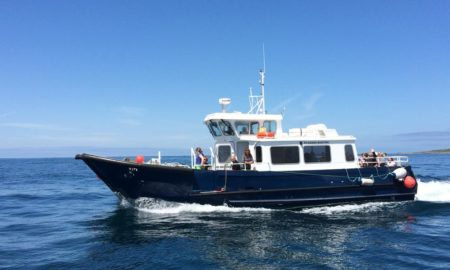Wildlife Safari with St Agnes Boating and Isles of Scilly Wildlife Trust