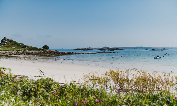 Spring views on Scilly