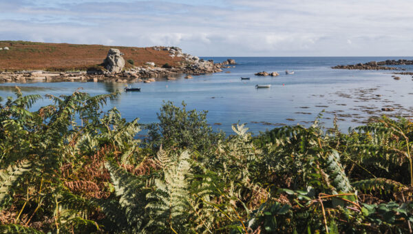 St Marys in autumn - September sea view